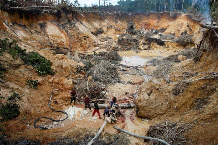 ANÁLISIS: El mundo debe detener la destrucción ambiental en Venezuela
